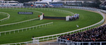 cheltenham horse betting